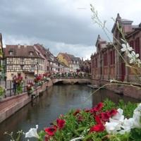 Teil 3: Störche über elsässischen Städten und Dörfern