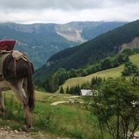 Teil 8: Prosper, on y va! – von La Pesse nach Bellecombe