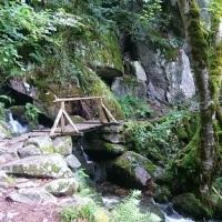 Teil 6: Wanderung am Wormsabach - Vallée du Munster